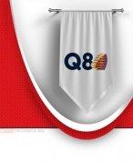 Масла Q8